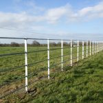 Steel Railings For Animal Field
