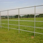 Steel Fence For Horse Field